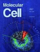 molecularcell