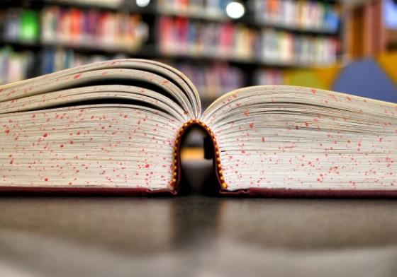 Ønsk en bog