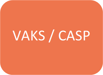 vaks_casp